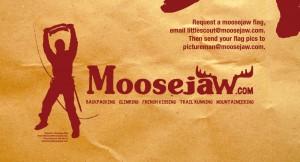 Moosejaw shopping bag